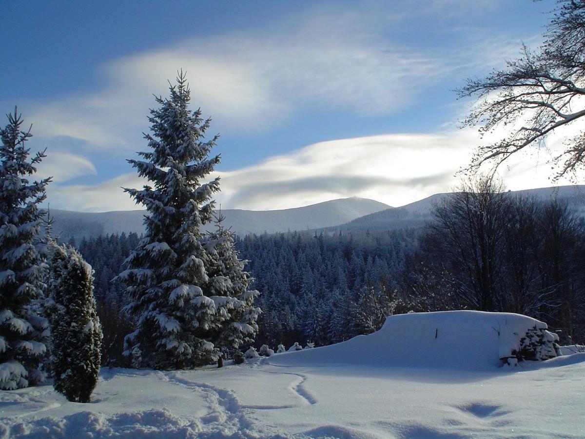 Zimowa panorama