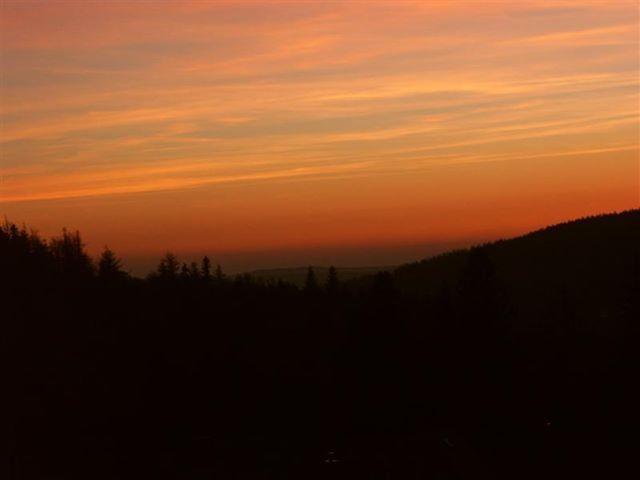 Harbulobraz na wschód Słońca