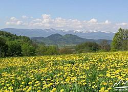 Panorama Karkonoszy | fot. Tenet