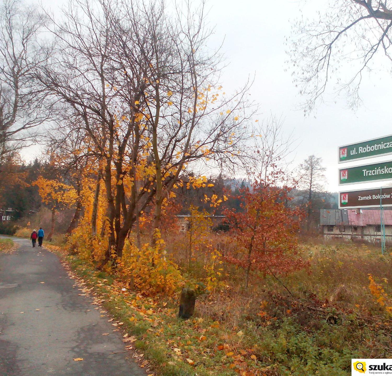 droga do zamku w Janowicach Wielkich