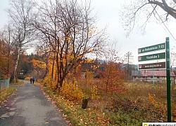 droga do zamku w Janowicach Wielkich | fot. Tenet