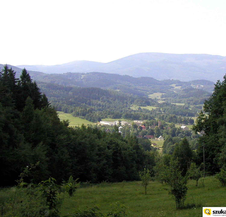 Widok sprzed Schroniska Szwajcarka