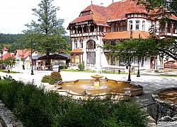 fontanna źabki Swieradów Zdrój | fot. Tenet