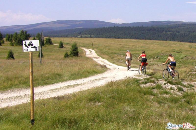 Trasy Rowerowe Jakuszyce