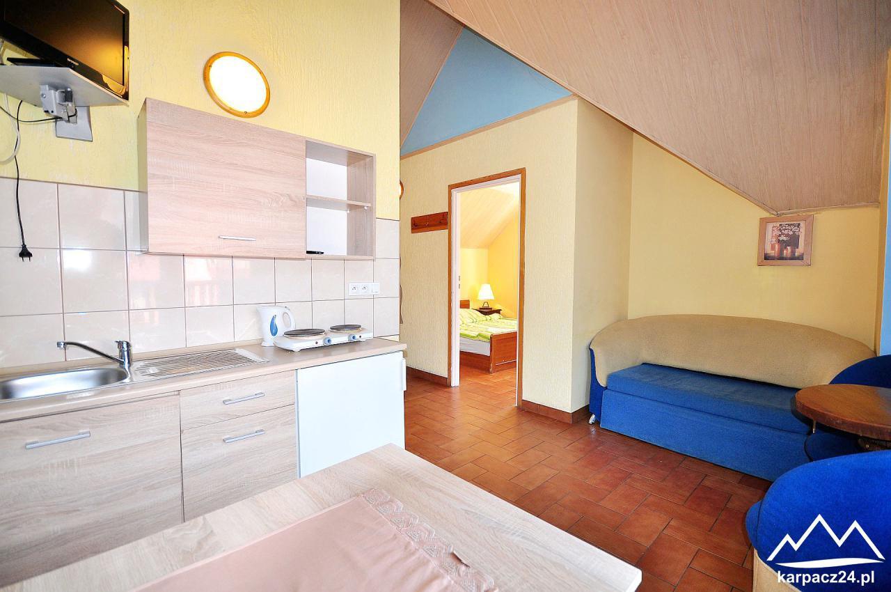 Apartament Górski 1